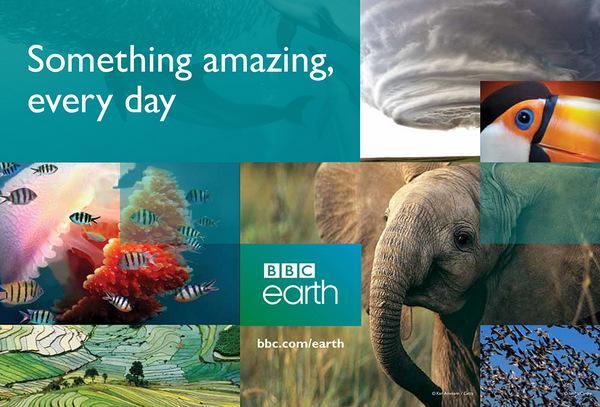 fpt-play-box-tv-box-bbc-earth-nghien-cuu-khoa-hoc